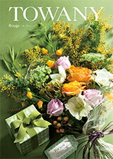 TOWANY ROUGE(Rouge) カタログ...の商品画像