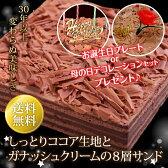 チョコレートケーキ【送料無料】バースデーケーキ 母の日 ギフト 誕生日ケーキ 誕生日 バースデー ケーキ 子供[凍] ギフト 誕生日プレゼント 洋菓子