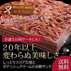 【送料無料】チョコレートケーキ◆しっとりココア生地とガナッシュクリームの8層サンド◆誕生日...