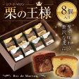 マロンケーキ 8個入ロアドマロン プレーン&ショコラ お中元 ギフト お菓子