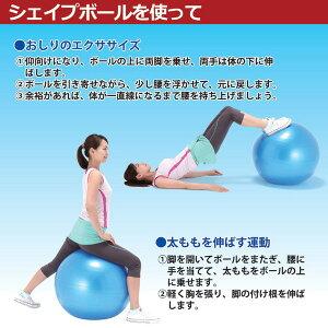 健康器具アクティブシェイプボール(台座・エキスパンダー付)
