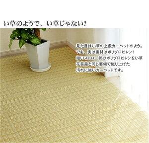 ござcarpetポリプロピレン素材洗えるPPカーペット江戸間10畳サイズ:約435×352cm/カラー:グリーン