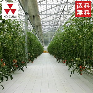【果樹に使うお勧めの光反射シートまとめ】農業用光反射シートの種類と性能を解説 99