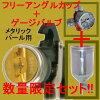�ʿ��̸����(K.V3)DEVILBISS�ǥӥ�ӥ����ץ졼����LUNA2-R-244PLS-1.0-G-K�������ϼ��ե�����������åס��긵���Ϸ��դ����å�