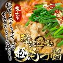 【送料無料】国産 チゲ もつ鍋 セット キムチ付 (牛モツ4...