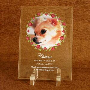 ガラス楯ペットメモリアルにオーダーメイド製作!大切なペットの思い出の写真で作る楯!御仏前記念品ペットの仏具