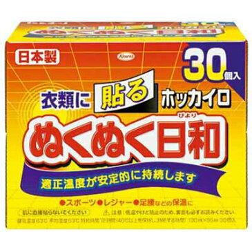 興和新薬ホッカイロ ぬくぬく日和 貼るレギュラー 30個