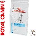 ロイヤルカナンベテリナリーダイエット スキンサポート 1kg [犬用]