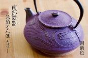 南部鉄器【国産】とんぼ(蜻蛉)現代急須|カラー【南部宝生堂】