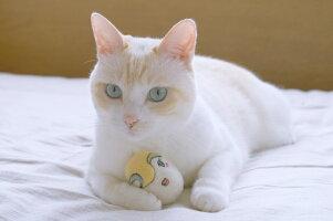 WOOLから生れた卵形のおもちゃketama/けたま(ルー)【いぬ・ねこのおもちゃ】