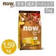 【ナウフレッシュNOWFRESH】グレインフリーパピー/1.59kgナウフレッシュ犬用フード子犬用ドッグフードカナダ産ドライフード【送料無料】