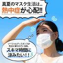 金属アレルギー対応 マスクチェーン マスクストラップ ネックストラップ 首 サージカルステンレス製 もうマスクをなくさない マスクを置かない 熱中症対策 マスクアクセ シンプル おしゃれ 3