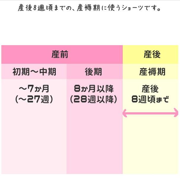 【メール便送料無料】マタニティ産褥ショーツおまかせ2点セット福袋RNB-set2019a