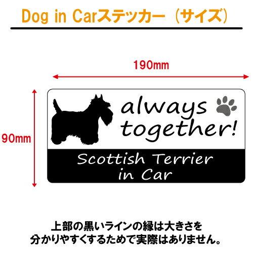 スコティッシュ・テリア scottish terrier in Car ステッカー プリントタイプ 【dog in car ドッグ インカー 犬 シール デカール】 ラッキーシール