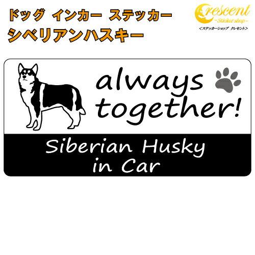 ステッカー, 車用ステッカー  siberian husky in Car dog in car