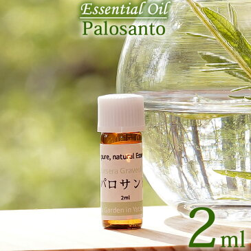 【パロサント 2ml】エッセンシャルオイル(精油) 100%ピュア Palo Santo, Essential Oil, Bursera graveolens