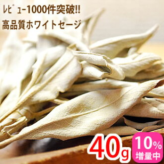 The pesticide-free and high quality fine branches with white Sage 40 g for purification from California: natural stone stones cleanse toy] Sage ホワイトセイジ smudging herbal incense aroma purifying Sedona factory x 1201