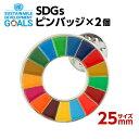 SDGS ピンバッジ 2個入り(25mmサイズ)#001