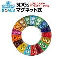 SDGSピンバッジ1個入り(25mmサイズ・マグネットタイプ)(スワロフスキーラインストーン付)#003