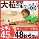 【送料無料】 安心の超低ホル 大判 45cm 大粒 天然 コ...