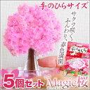 【送料無料】枯れ木の桜を咲かせましょう♪自分で咲かせる不思議な桜 Magic桜ミニ マジック桜 m...