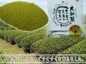 藤井さん家の大和茶粉末タイプ「万福」30g