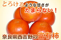 奈良県西吉野産 富有柿 3kg訳あり 送料無料なくなり次第終了