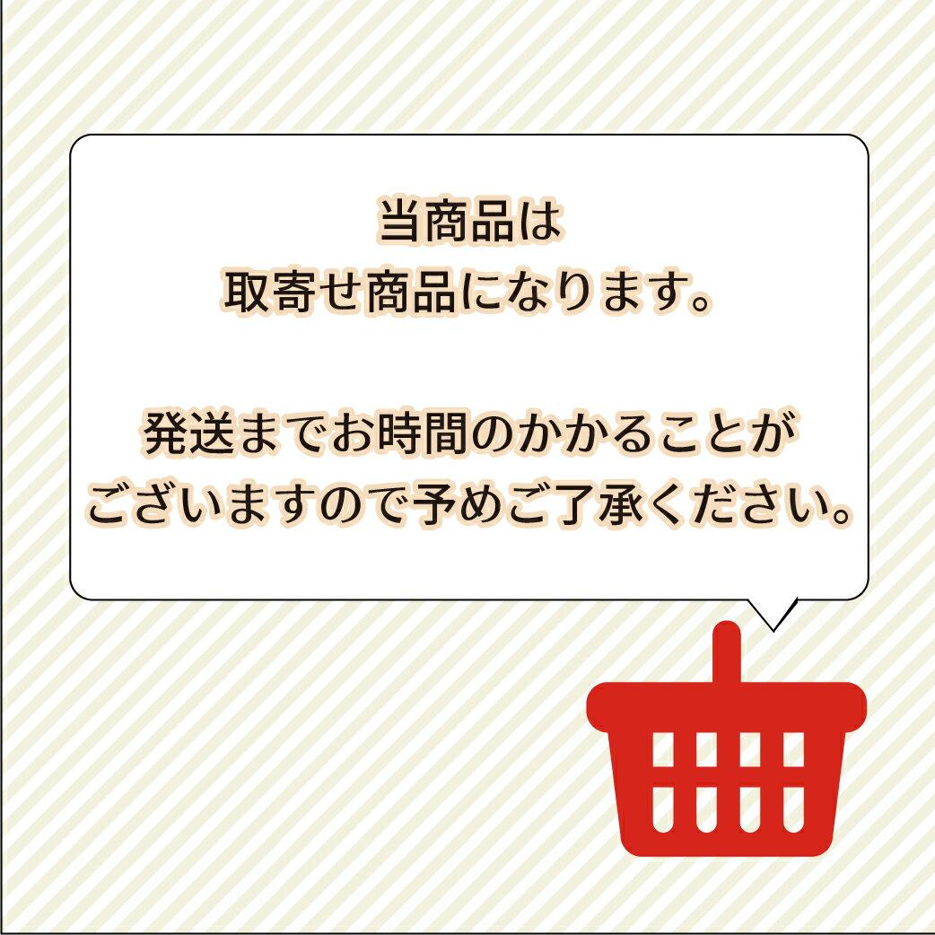 佐藤商事 匠japan マグマプレート玉子焼き 中 MGEG-M(取寄せ商品)