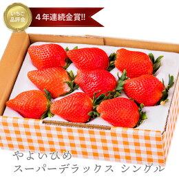 イチゴ,苺,いちご,やよいひめ,高品質,高鮮度,お取り寄せ,贈り物,贈答品