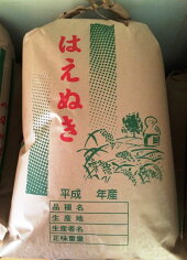 【新米】特別栽培米はえぬき平成28年新米<玄米5kg>