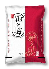 【お米】新潟県産新之助(5kg)