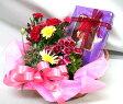 花鉢・観葉植物とスイーツのセット【赤い帽子のクッキー&チョコ】  096 【花とスイーツ】【生花】【送料無料】【あす楽】