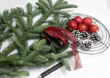 フレッシュモミの木と姫リンゴ・サンキライのクリスマスリースキット 【クリスマスリース 手作りキット】【生花】【切花)】【資材】【thxgd_18】