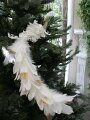スタイルロココ クリスマスオーナメント♪ (ホワイトスカイバード・ロングテール) 鳥モチーフ  シャビーシック 北欧 フレンチ ロマンティック 可愛い クリスマス飾り ツリーオーナメント ツリートップ