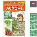 野菜のタネ カリフローレ(カリフ...