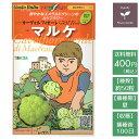 野菜のタネ マルケ(カリフラワー...