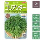 野菜の種 実咲ハーブ8090 ハーブ コリアンダー(パクチー)