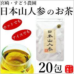 日本山人参(ヒュウガトウキ)ティーパック