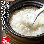 【送料無料】鹿児島県出水産ひのひかり5kg<梅>精米・玄米を選べる!【田上商店】