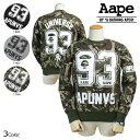 Ape01-151125-12-a