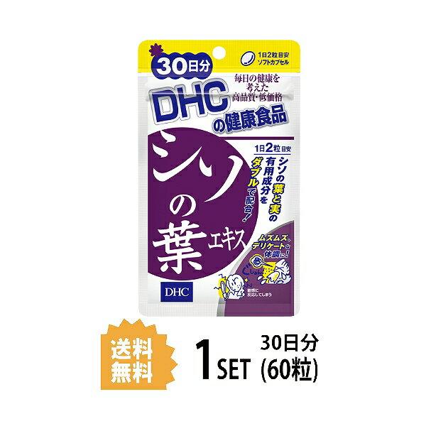 【送料無料】 シソの葉エキス 30日分 (60粒) ディーエイチシー
