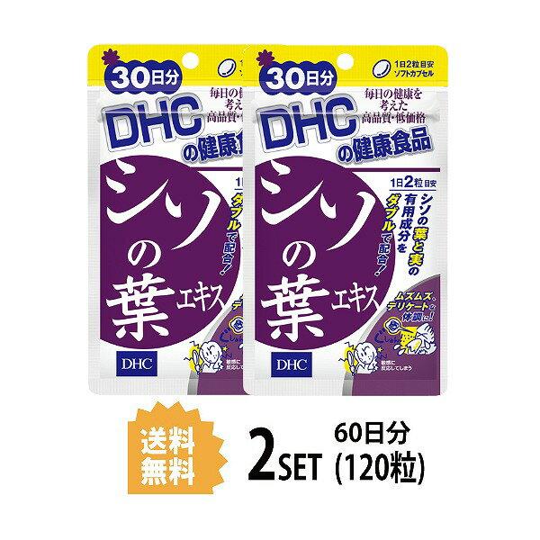 【送料無料】【2パック】 シソの葉エキス 30日分×2パック (120粒) ディーエイチシー