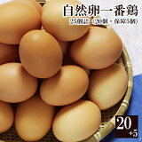 自然卵一番鶏「25個詰」(20個+破損保障分5個) 千葉県産 香取市小見川の地卵 お取り寄せグルメ 平飼い 放し飼い ※【 冷蔵 限定配送 】※冷凍限定商品とは同梱できません 別途送料がかかります