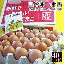 放し飼い 自然卵 一番鶏 「50個詰」(40個+破損保障分10個) [ 鶏卵 千葉県産 香取……