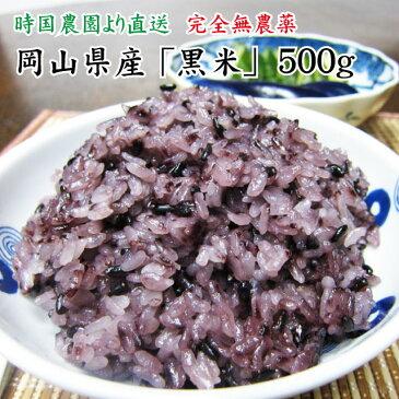 岡山県産 黒米 500g 新米 平成29年産 時国農園より産地直送
