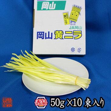 岡山県特産 超高級食材 黄ニラ 秀品 500g(50g×10束) ニラ 野菜 ご当地 お取り寄せ