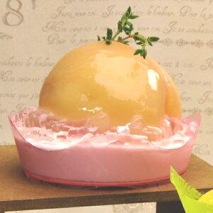 【ケーキトレープラスチック】PS76φアラモードトレーガトデリ薄赤50個【インジェクショントレープラスチックのケーキトレー】【アラモードトレー】