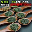 8種類の無農薬煎茶のお試しセットメール便送料無料★水車むら農園 1000円ポッキリ