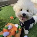 【 犬 おもちゃ 】IDOG&ICAT オリジナルラテックスTOY はじけるそらマメ【 ラテックス ゴム ラバー 犬用おもちゃ ドッグトイ 玩具 かわいい 超小型犬 小型犬 犬用 i dog 楽天 】【 あす楽 翌日配送 】