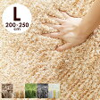 ラグ ラグマット 200×250 厚手 目付け2000 2色織 ふかふか カーペット シャギーラグ 滑り止め 絨毯 じゅうたん 楽天 通販 CARPET 送料無料